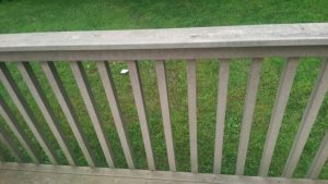 Deck Stairs Cover Photo