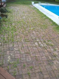 Lawn Pavers Cover Photo