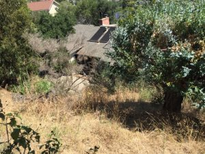 Hillside Weed Removal Cover Photo