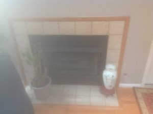 Remove A Gas Insert Fireplace  Cover Photo