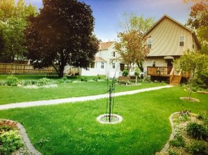 Cost To Landscape Yard