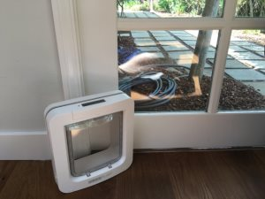 Pet Door Install Cover Photo