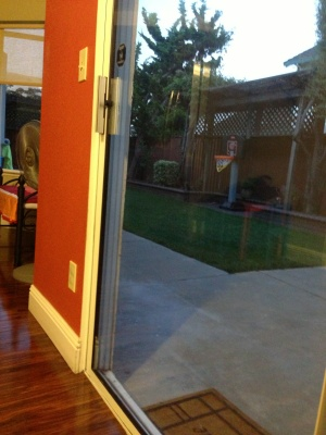 Backyard Door Cover Photo