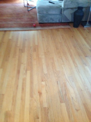 Hardwood Floor Staining Cover Photo