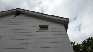 Eaves Painted  Cover Photo