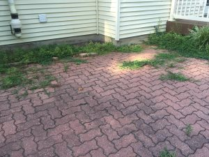 Patio Removal, Replacement,A Nd Area Re-Grading Cover Photo