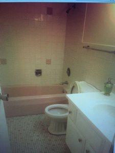 Bathroom Reno And Kitchen Floor Cover Photo