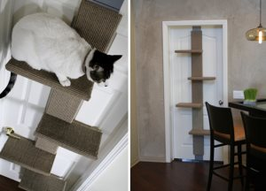 Cat Tower Cover Photo