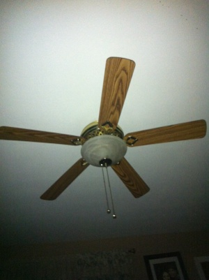 Install Ceiling Fan Cover Photo