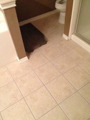 Floor Tiling Cost