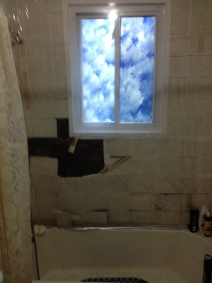 Bathroom Total Remodel Cover Photo