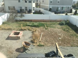 How Much To Landscape a Backyard