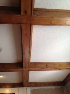 SLT Living Room Ceilings Cover Photo