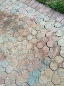 Driveway Paving Costs