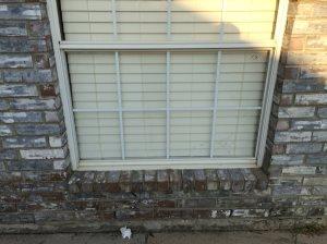 Window Glass Pane Cover Photo
