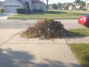 Yard Waste Collection Cover Photo