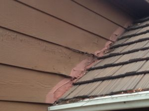 Replace Some Siding. Cover Photo