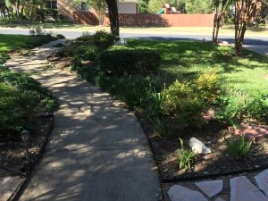 Replant Walkway Border  Cover Photo