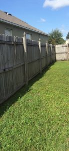 Yard Care Services