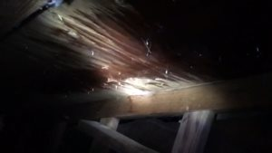 Roof Leak Repair Cover Photo