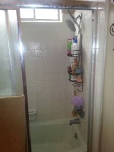 Looking FOR Estimate TO Remodel MY Shower Cover Photo