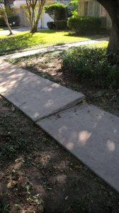 Canyon Way Sidewalk Cover Photo