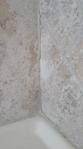 Regrout Shower Tile Cover Photo
