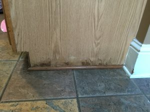 Fix Kitchen Cabinet  Cover Photo
