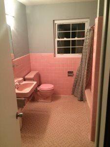 Pink Bathroom Cover Photo