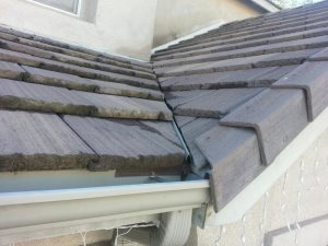 Roof Repair Cover Photo