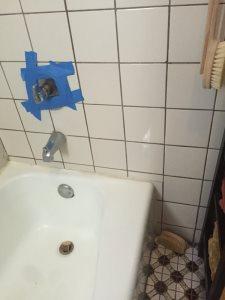 Bathtub Cover Photo