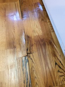 Hardwood Floor Repair Cover Photo