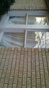 Energy Efficient Windows Cover Photo