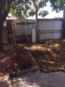 Lawn Aeration Service