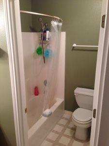 Master Bathroom Shower Cover Photo