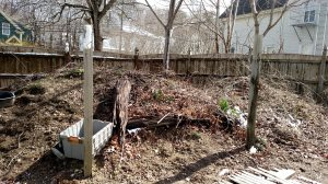 Dirt/Compost pile removal Cover Photo