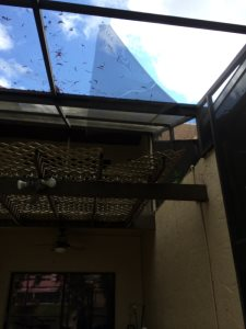 Screened In Patio Repair Cover Photo