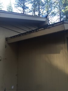 Roof Repair And Replace  Cover Photo