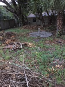 How To Landscape Backyard
