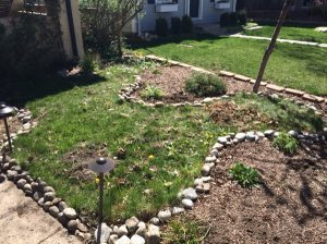 Replace Grass With Flagstone Cover Photo