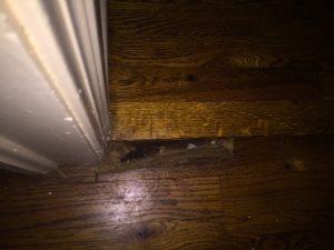Discount Laminate Flooring