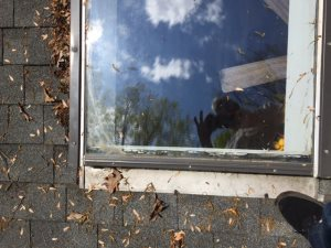 Replace Skylight Windows Cover Photo