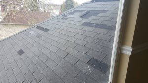 Antioch Roof Cover Photo