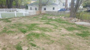 Backyard Repair  Cover Photo