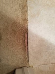 Carpet Repair Needed Cover Photo