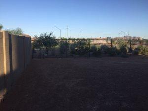 Back Yard Landscape Cover Photo