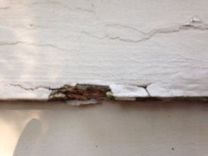Rotten Siding  Cover Photo