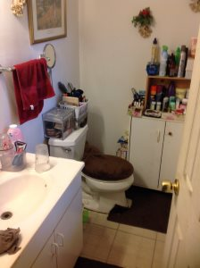 Remodeling A Bathroom Cover Photo