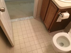 Bathroom Floor  Cover Photo