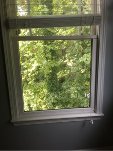 Window & Door Repair Cover Photo